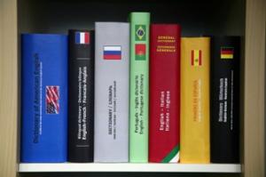 Dizionari multilingue