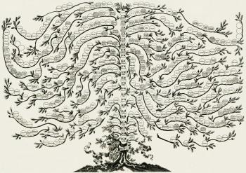 Un albero genealogico