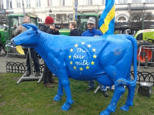 La manifestazione degli allevatori a Bruxelles nel giorno della fine delle quote latte